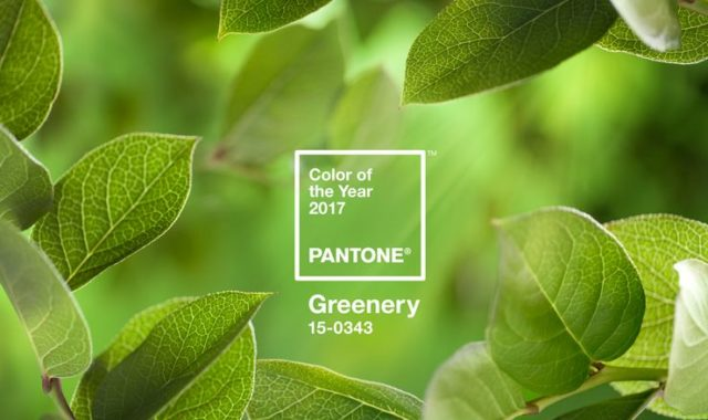 Pantone 2017 Color of the Year: Greenery