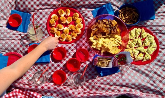 Entertaining on a Budget with Dollar Tree: #CurvilyGinghamPicnic
